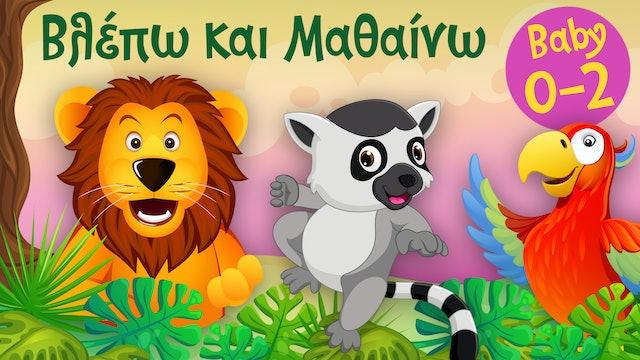 Τα Ζωάκια της Ζούγκλας #1   Βλέπω και Μαθαίνω