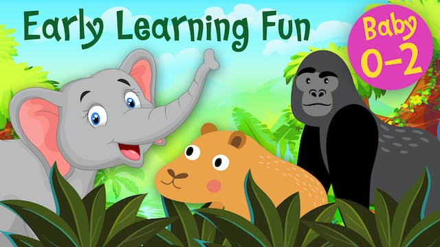 Jungle Animals Vol.3 | Early Learning...