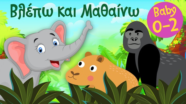 Τα Ζωάκια της Ζούγκλας #3   Βλέπω και Μαθαίνω