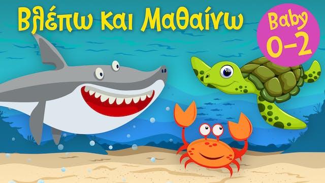 Τα Ζωάκια της Θάλασσας #2 | Βλέπω και...