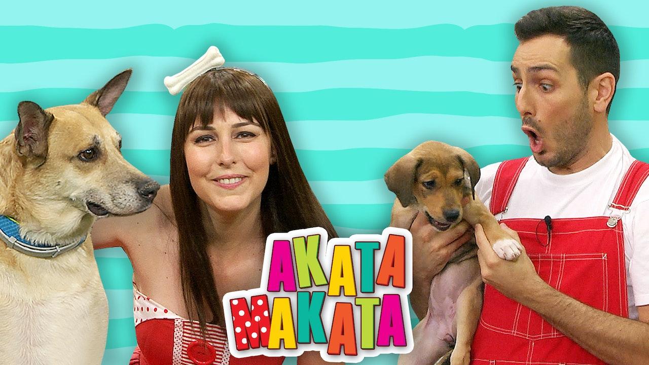 ΑΚΑΤΑ ΜΑΚΑΤΑ | Η Ακαντού, ο Λυκούργος και τα σκυλάκια
