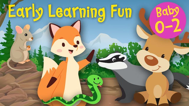 Forest Animals Vol.2 | Early Learning...
