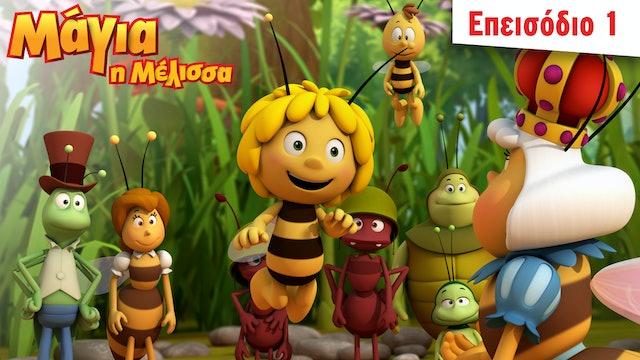 O δικαστής των μελισσών