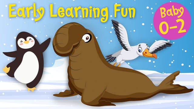 Polar Animals Vol.3 | Early Learning Fun