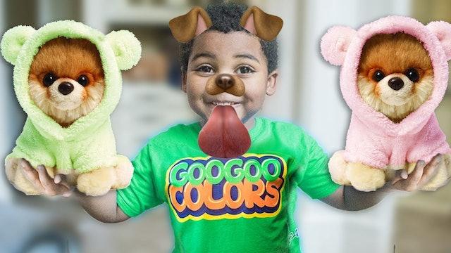 GOO GOO GAGA HAS A NEW DOG! LEARN TO SPELL DOG WITH GOO GOO COLORS