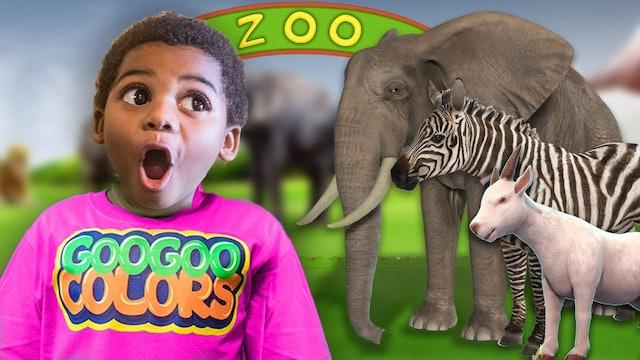 ZOO ANIMALS PRETEND PLAY HIDE N SEEK with GOO GOO GAGA! LEARN TO COUNT TO 5
