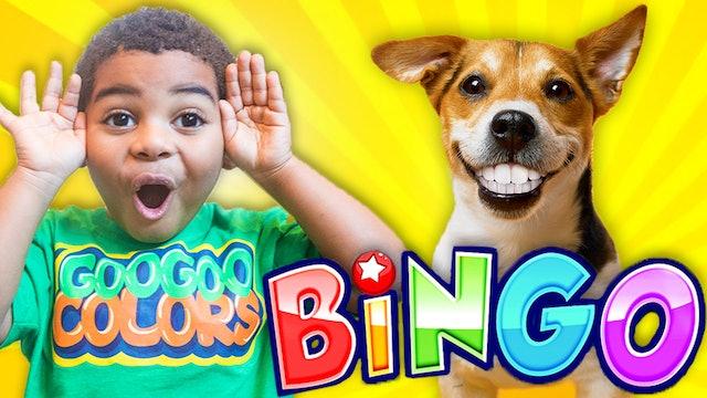 Bingo Song