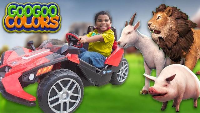 GOO GOO GAGA & ZOO ANIMALS PLAY HIDE N SEEK! LEARN TO COUNT TO 5